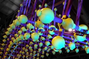 Sea Urchin-07 web